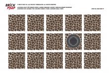 Paving Stones & Manhole Cover